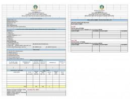 安哥拉CNCA船运 申请表样本